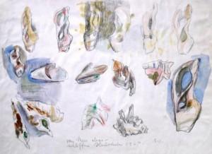Wolfgang von Websky: Vom Meer abgeschliffene Muscheln Galerie