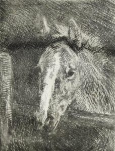 Josef Woldemar Keller-Kühne: Junges Pferd (Galerie)
