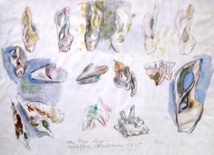 Wolfgang von Websky: Vom Meer abgeschliffene Muscheln